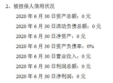 九鼎集团子公司营收.png