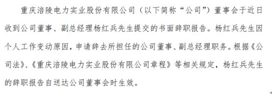 涪陵电力董事、副总经理杨红兵因个人工作变动原因提交书面辞职报告