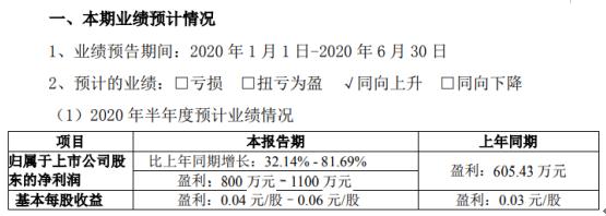 和胜股份2020年上半年预计净利80