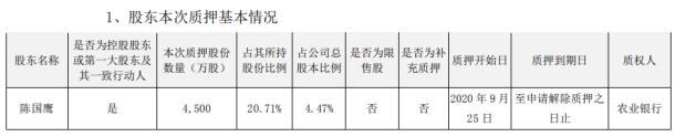 国脉科技控股股东陈国鹰质押4500万股 占公司总股本比例4.47%