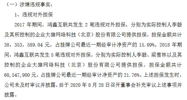 鸿鑫互联违规1.png